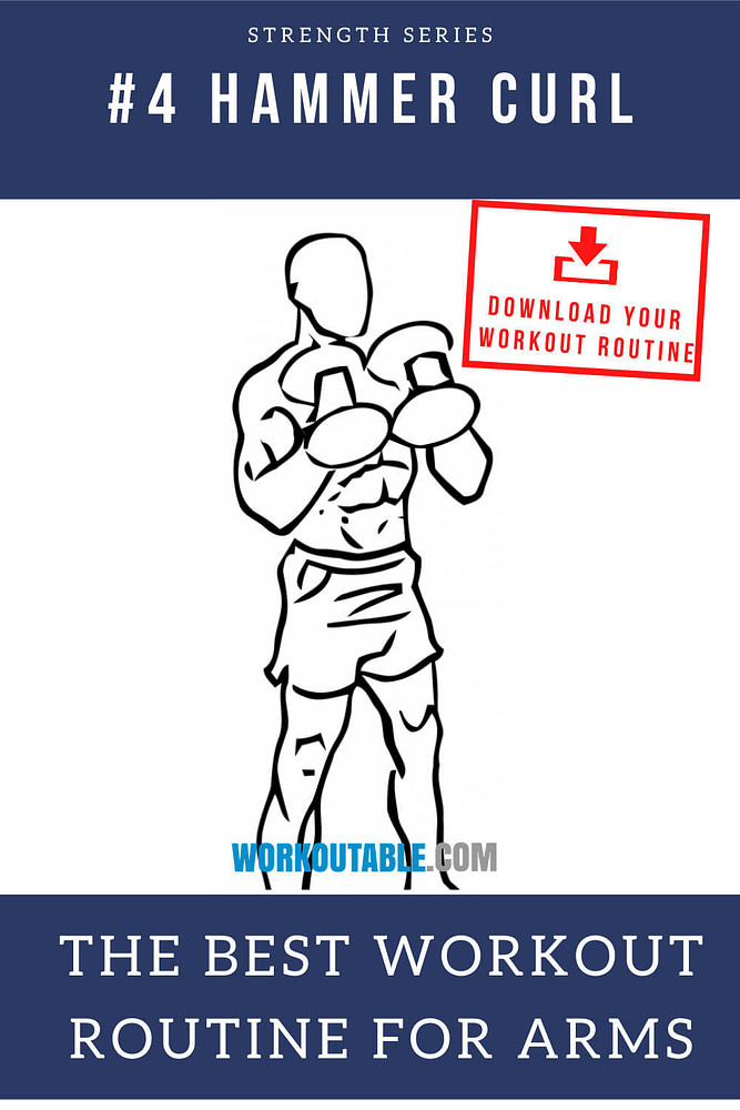 dumbbell hammer curl the best workout routine for arms