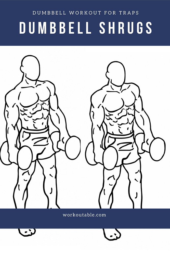 trap workout with dumbbells- dumbbell shrugs