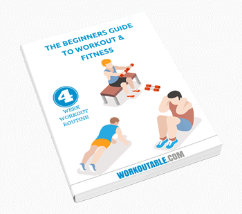 beginner-guide