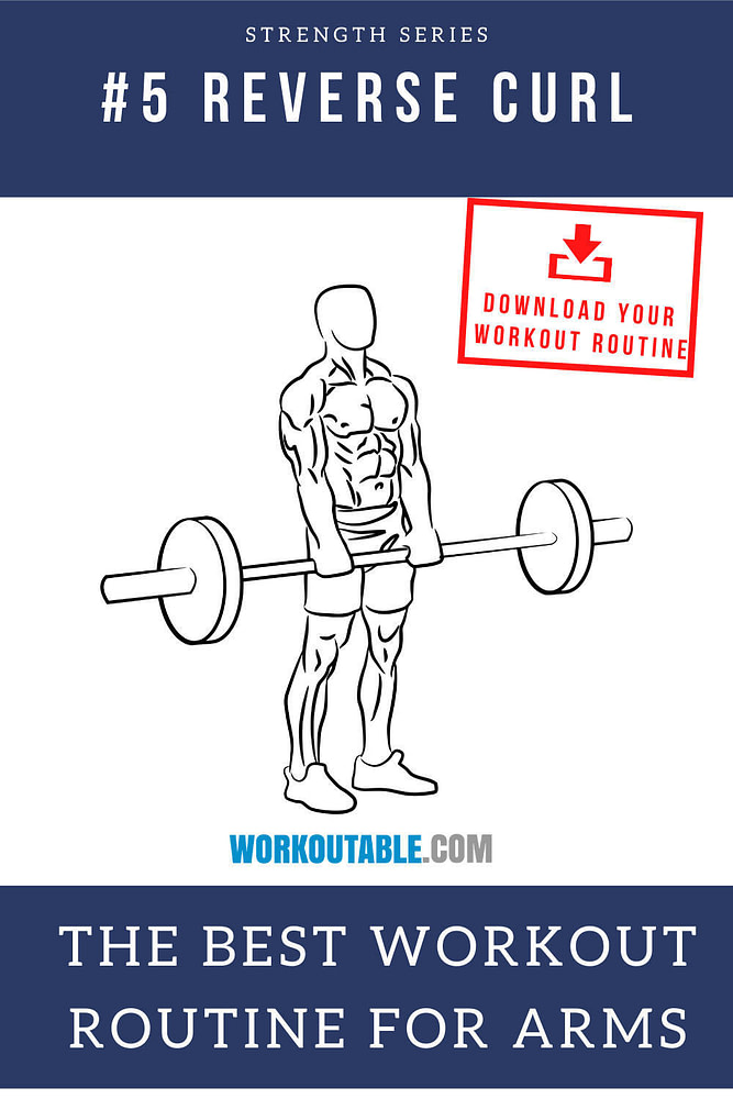 barbell reverse curl the best workout routine for arms