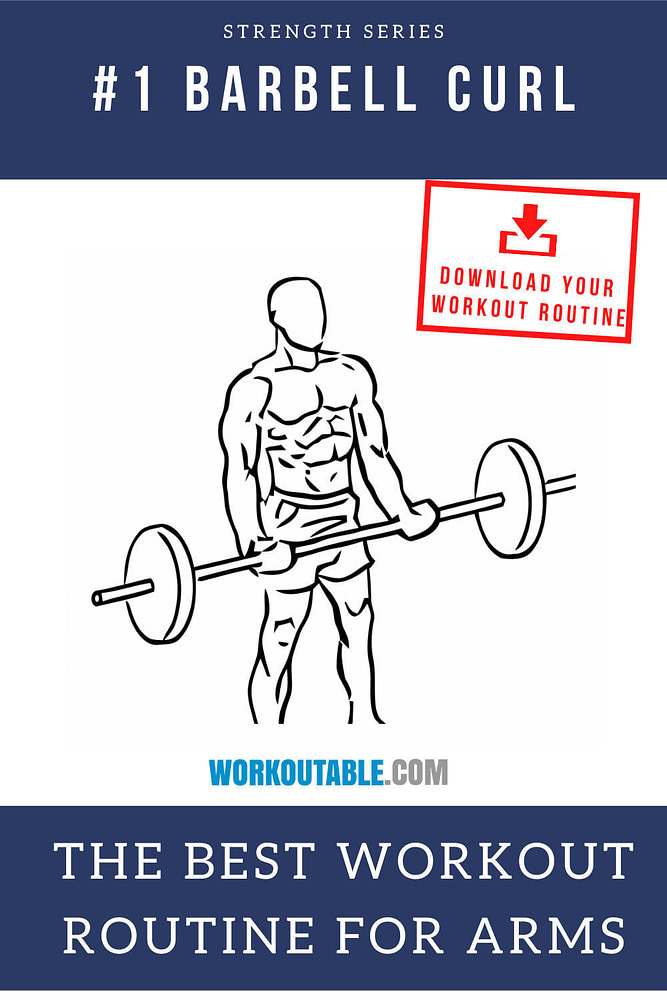 barbell curl the best workout routine for arms